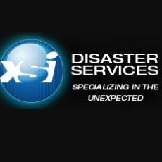 XSI Disaster Services - Logo