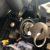 Car Locksmith St Louis MO