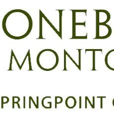 Stonebridge-Logo-New-1