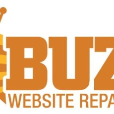 website repair