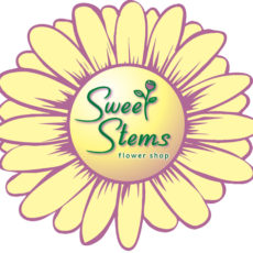1564695772_logo.jpg