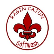 Ragin-Cajun-Softwash-LLC.jpg